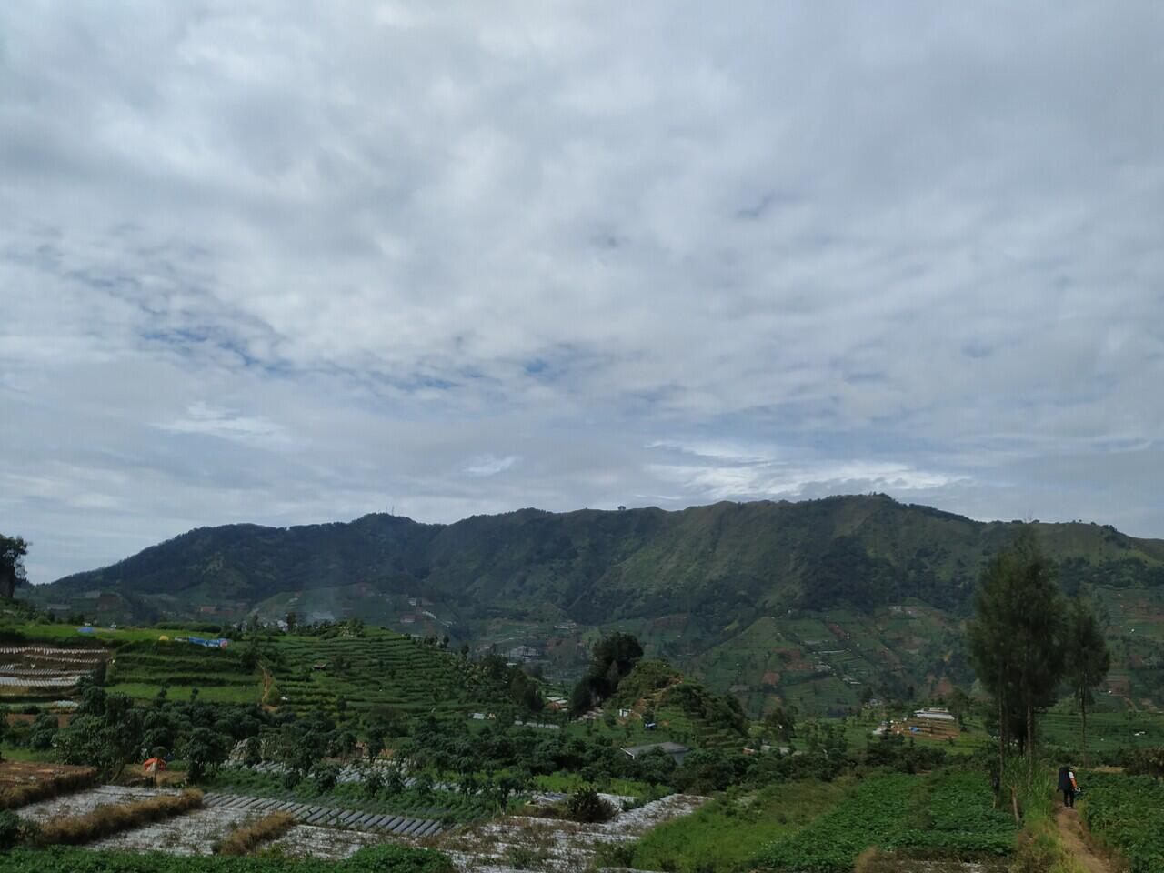 KALAH TENAR di MEDSOS daripada Gunung Prau ! CATPER Gunung Pakuwaja via Parikresit