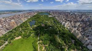 Mengembalikan Alam Ke Kota Gimana Caranya?