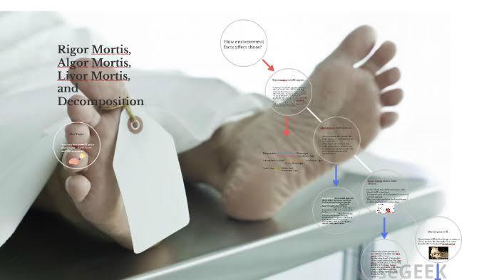 WOW Ternyata begini cara mengindentifikasi mayat, ini ciri-ciri biologisnya