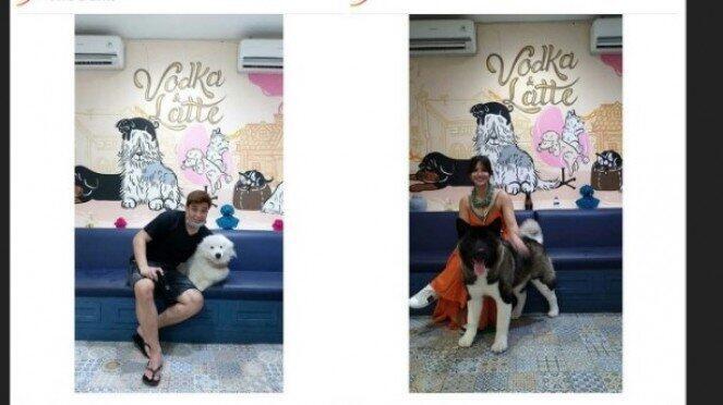 Ramai Artis Muslim Pelihara Anjing, UAS dan Buya Yahya Ungkap Hukumnya
