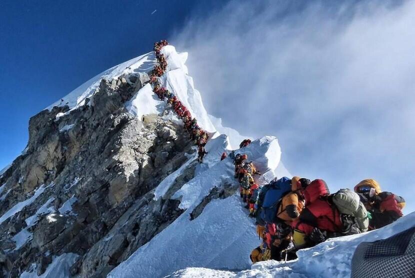 Lebah Bumblebee! Serangga Yang Skill Terbangnya Melebihi Ketinggian Gunung Everest!