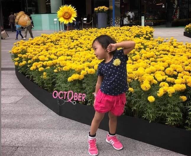 [COC Reg. Mojokerto] Hamparan Bunga Refugia Menjadikan Mojokerto Viral