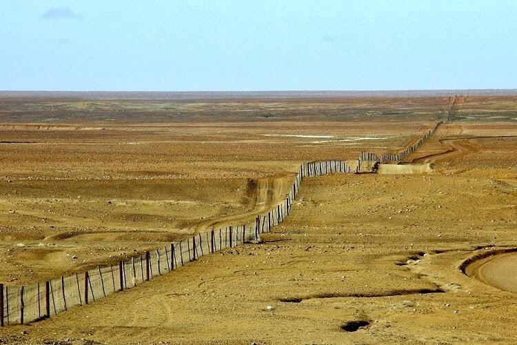 Dingo Fence! Pagar Terpanjang Di Dunia, Panjangnya 4 Kali Pulau Jawa Loh!