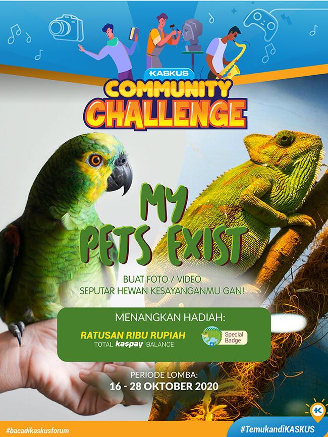 Community Challenge Edisi Pets Part 2, Ikutan Lagi Dong!!