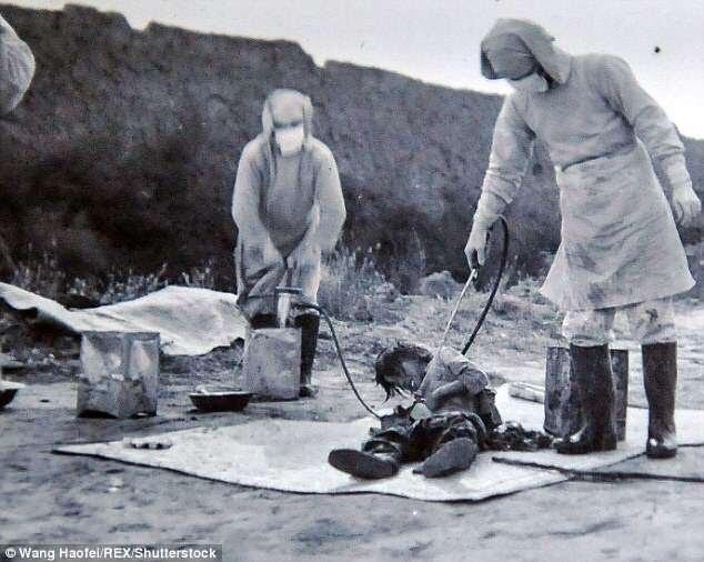 Percobaan Senjata Biologi Jepang Kepada Manusia