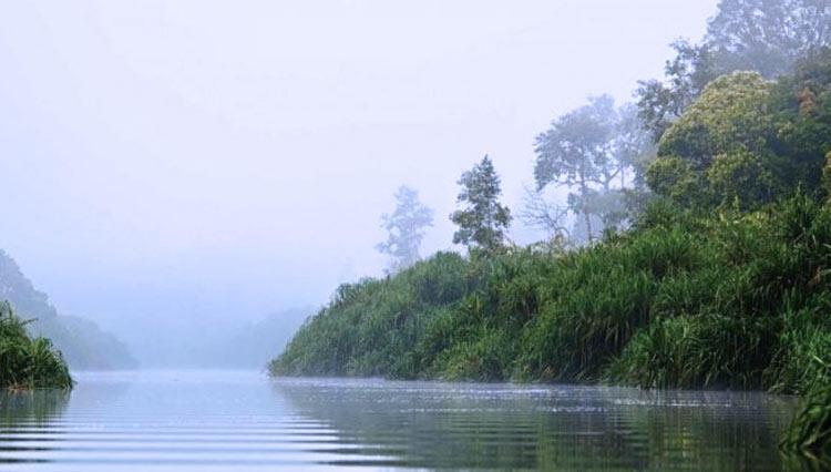 [Coc Reg. KalTeng]Keunikan Warna Air Danau Kalimantan Tengah, Ada Yang Hitam!