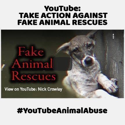 Waspada ! Video Palsu dan 'SETTINGAN' Di YouTube Tentang Penyelamatan Hewan !