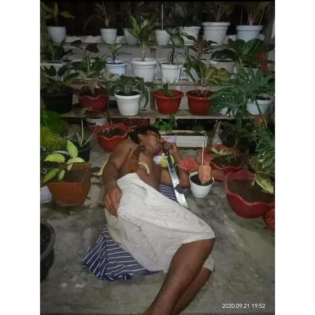 Viral! Para Suami Rela Tidur di Teras Rumah Demi Menjaga Tanaman Hias Istrinya