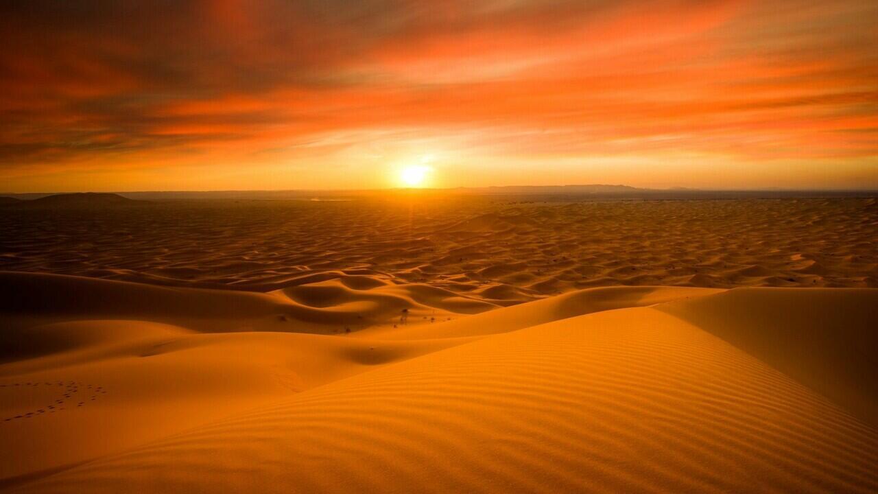 Dulu Gurun Sahara Pernah Jadi Hutan Lebat, Kenapa Bisa Berubah?