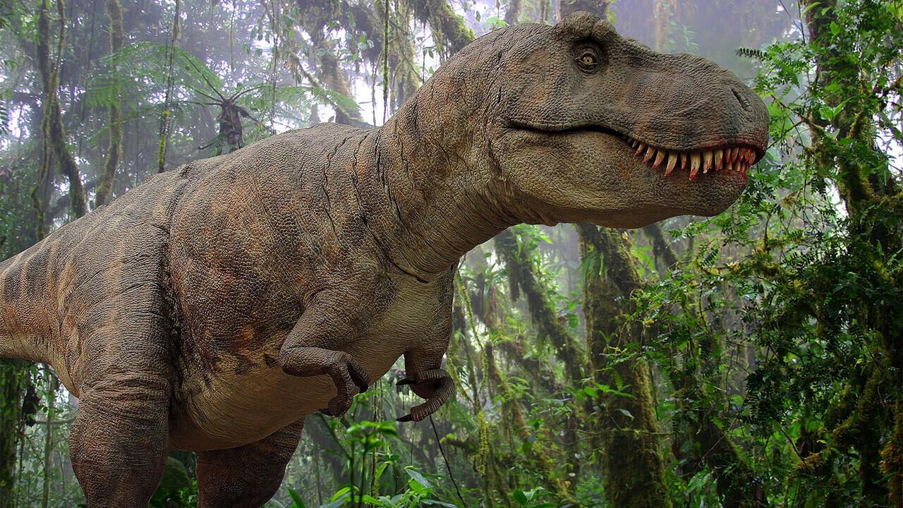 Gak Nyangka! T-Rex Ternyata Punya Hubungan Dekat Dengan Hewan Yang Sering Kita Makan
