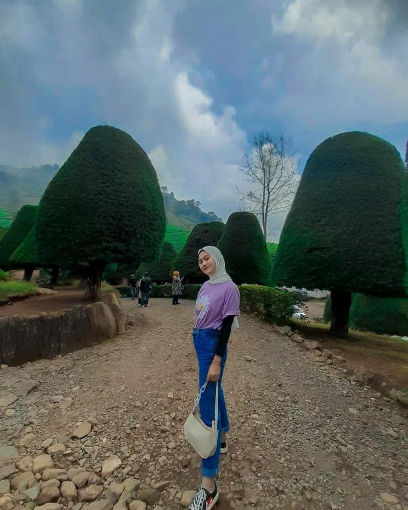Bukit Jamur Ciwidey, Bandung. Tempat Wisata Murah Dan Bikin Betah
