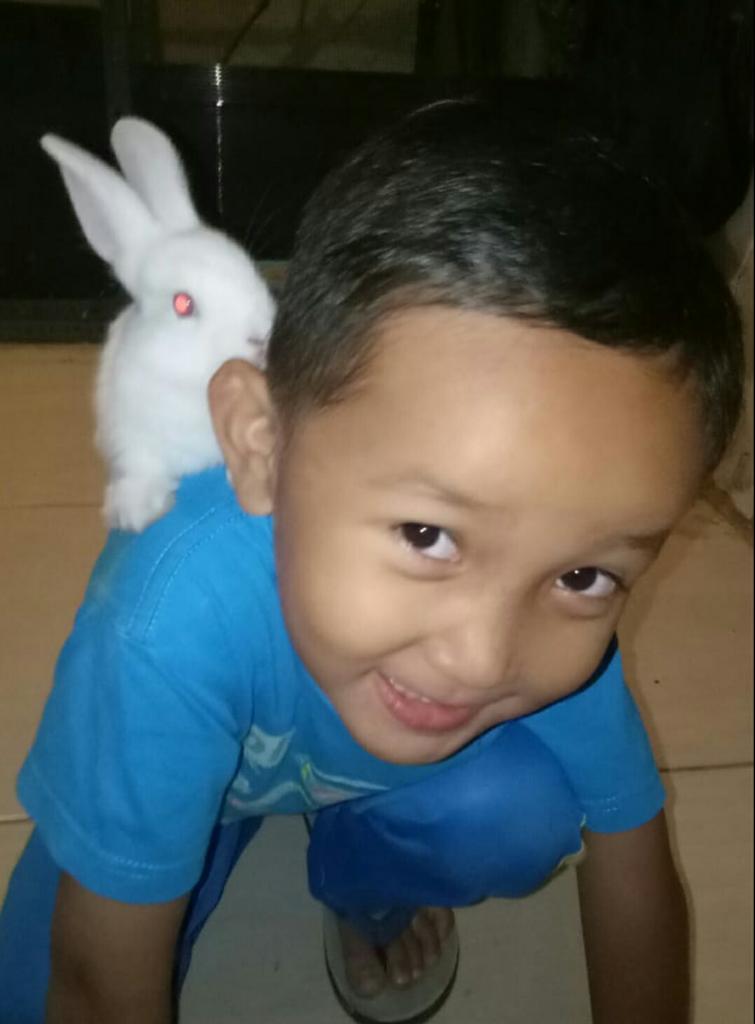 Main Seru Dengan Cici, Kelinci Putih Kesayangan Anak-anak