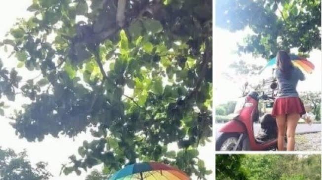 Viral Penjual Kopi Pakai Rok Mini di Serangan Bali, Netizen Penasaran