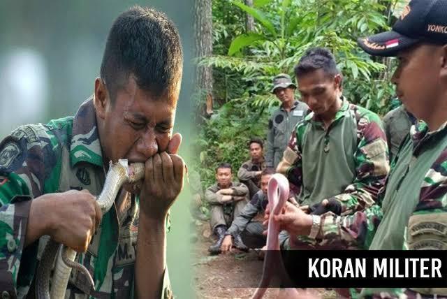 Latihan TNI Makan Tokek Dan Ular Di Kritisi, Prabowo Pun Kena Imbasnya