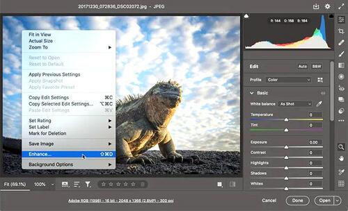 Adobe Ngamuk, Dengan Teknologi AI Foto Buram Sekarang Bisa Jadi Setajam Silet?