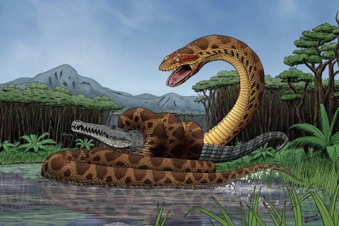 Membayangkan Saat Tubuh Ditelan Anaconda? Ini Gambarannya, Menyeramkan!