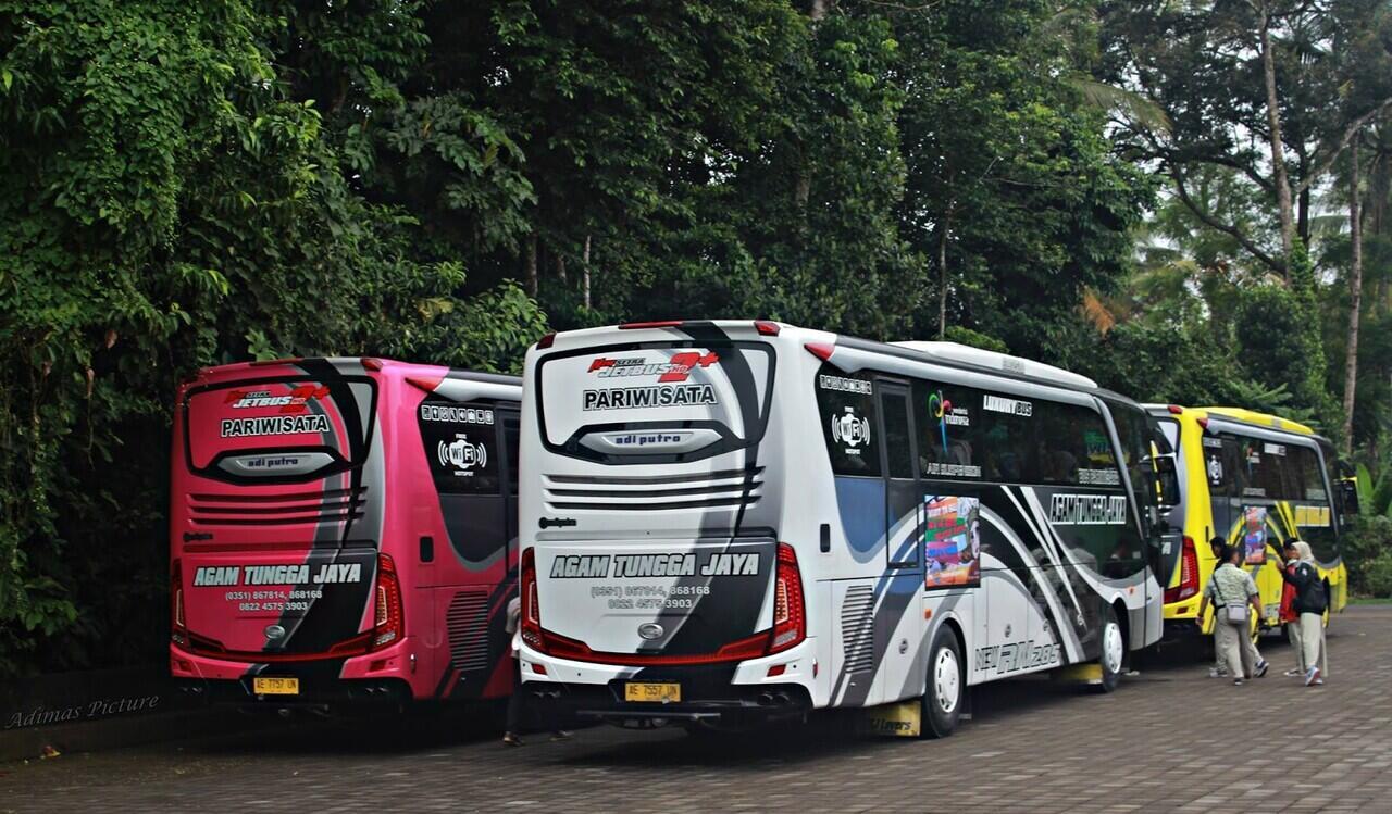 Sudiro Tungga Jaya, Dari Elf Pariwisata Sampai Bus AKAP Elkusla