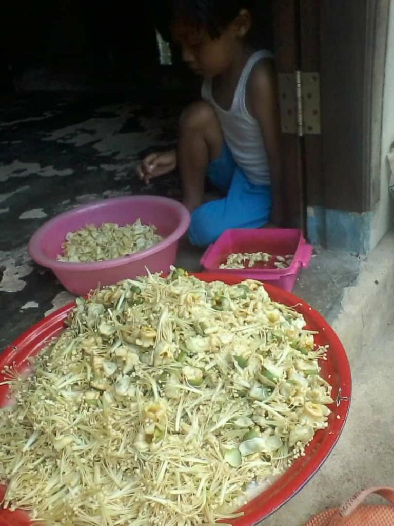 Kembang Durian Dimasak? Enakkah?
