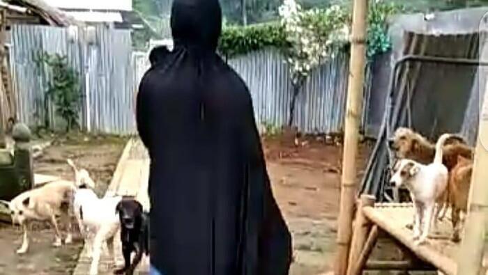 70 Anjing Peliharaannya Ditolak, Wanita Bercadar Ungkap Provokator