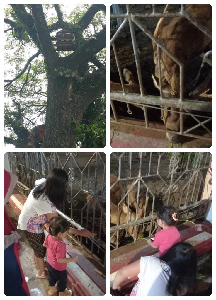Berkunjung ke Museum Kartini di Jepara, Wisata Edukasi Mengisi Waktu Liburan Anak!