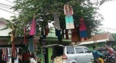 Jualan Gamis Di Atas Pohon, Siapa Yang Beli?