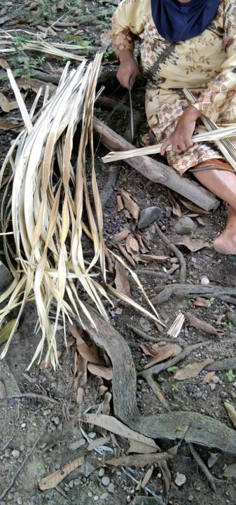 UMKM Dagang Sumpit Jelang Id Fitri, Masyarakat Lansia Akan Sibuk Membayu Sumpit!
