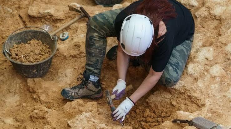 Ngakak, Mainan Seks Abad Ke-18 Ditemukan Para Arkeolog di Polandia, Milik Siapa Woi