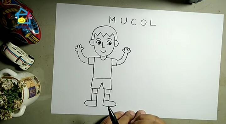Tips Membuat Karakter Orang dengan Tehnik M U C O L, Apa Itu M u c o l ?