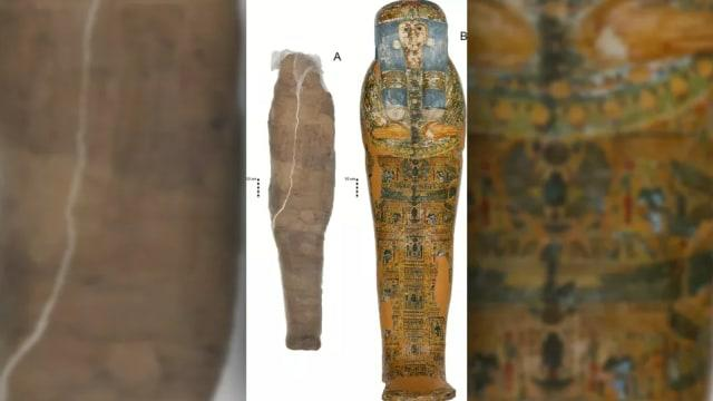 Ada Mumi Lumpur Ditemukan di Mesir Kuno, Begini Penampakannya!