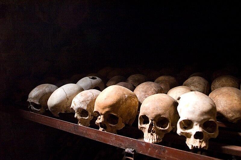 Genosida Rwanda, Sebuah Tragedi Kemanusiaan di Afrika