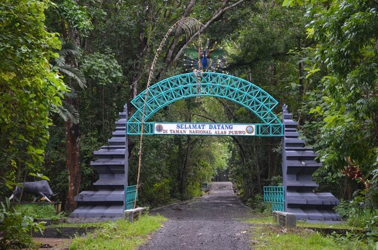 Mengembangkan Wisata Angker dan Seram di Banyuwangi Cocok Kali, Ya?
