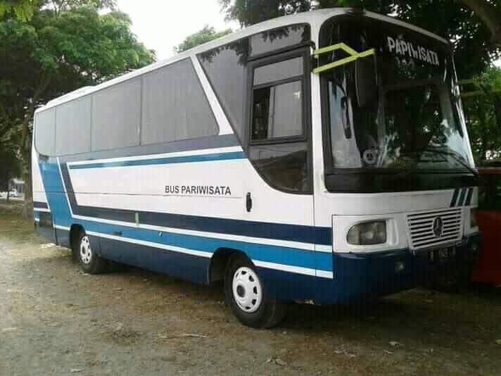 Mercedes Benz MB700 dan MB800 - Dibuat Untuk Menjegal Dominasi Mitsubishi Colt Diesel