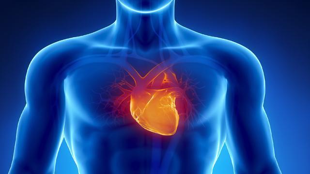 Apa Jadinya jika jantung manusia berhenti 1 detik saja?