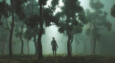 Inilah Hal-hal yang Ditakutkan Ketika Tersesat di Hutan