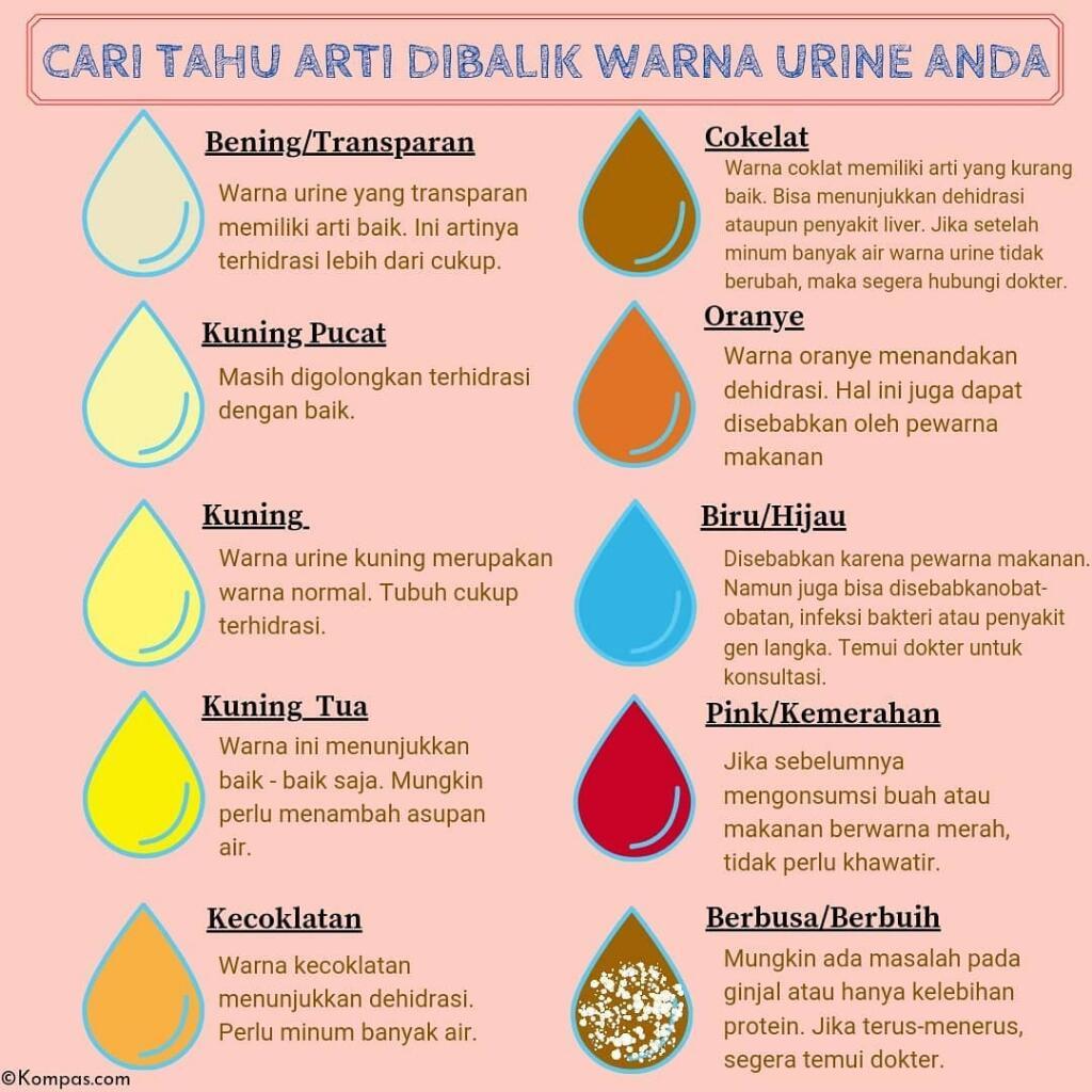 Apa Warna Urine Anda Hari Ini?