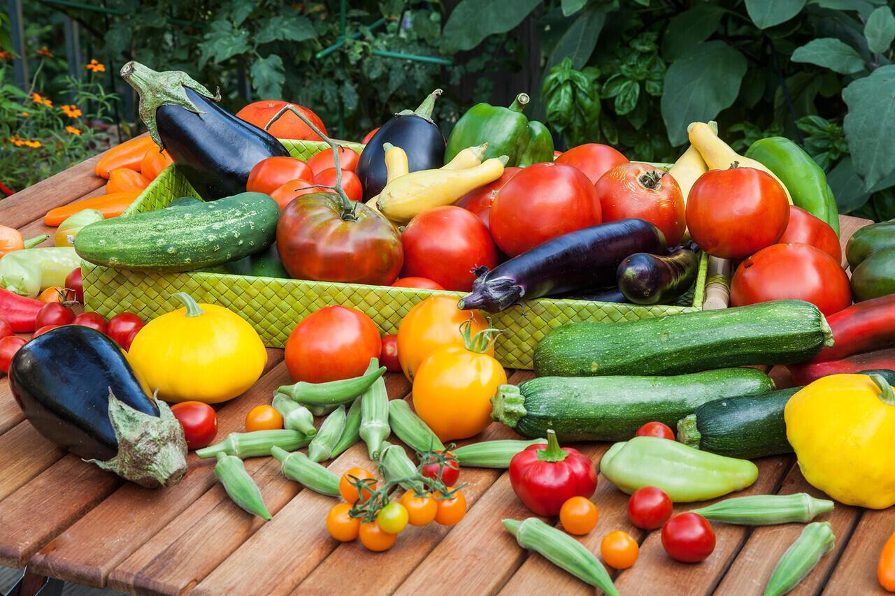Mitos Atau Fakta: Makanan Kita Semakin Kurang Bergizi? Penting Untuk Diketahui