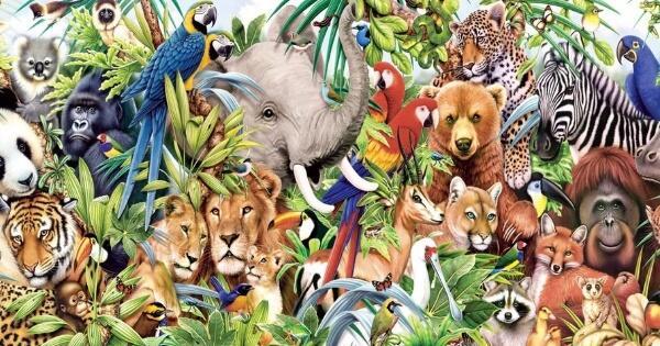 5-hewan-yang-memiliki-gelar-quotrajaquot-selain-raja-singa