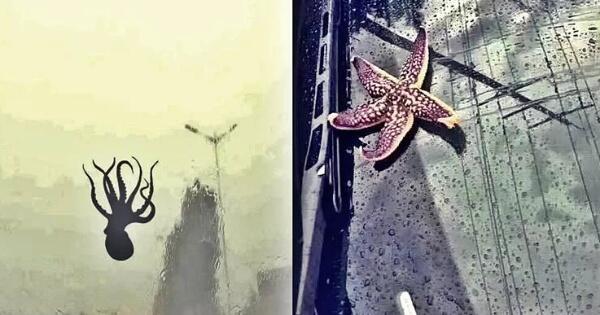 fenomena-langka--wah-ada-hujan-seafood-di-tiongkok-gan