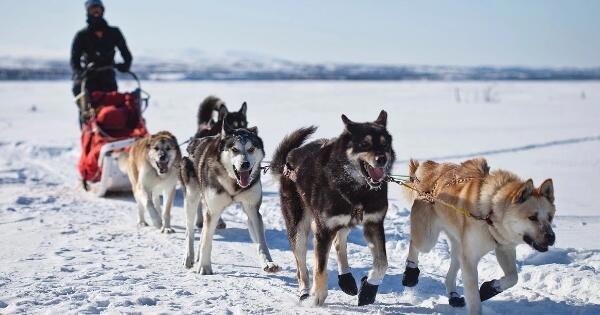 5-petualangan-ekstrem-di-dunia-ada-yang-berani
