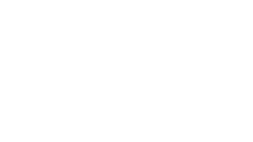 logo-idn-media
