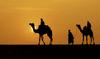 12 Kutipan Alquran & Hadits Akan Memotivasimu yang Ingin Berhijrah