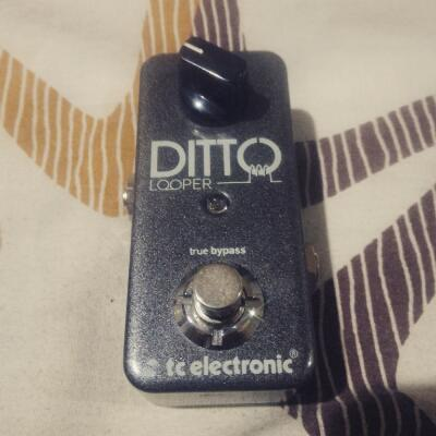 BNIB: TC Electronic Ditto 'Mini' Looper (Danish made)