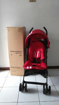Mini Buggy Easy Walker