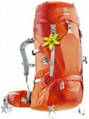 Tas Carriel Deuter Act Lite 35+10SL Discount 40%