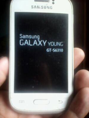 Samsung Galaxy Young 2 GT-S6310