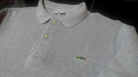 POLO SHIRT LACOSTE (Bahan Sweater)