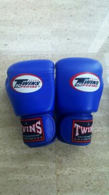 Sarung tinju , boxing , muay thai / Glove twins
