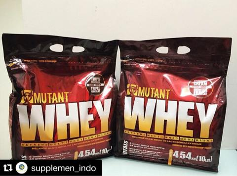 supplement fitness whey, gainer, fat burner, amino, creatine, testosterone booster
