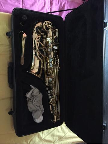 saxophone alto mess gold