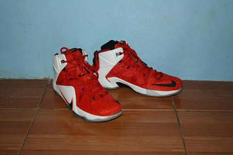 super popular 3f073 96b5a ... official jual sepatu nike lebron 12 lion heart d0a5d e10d1